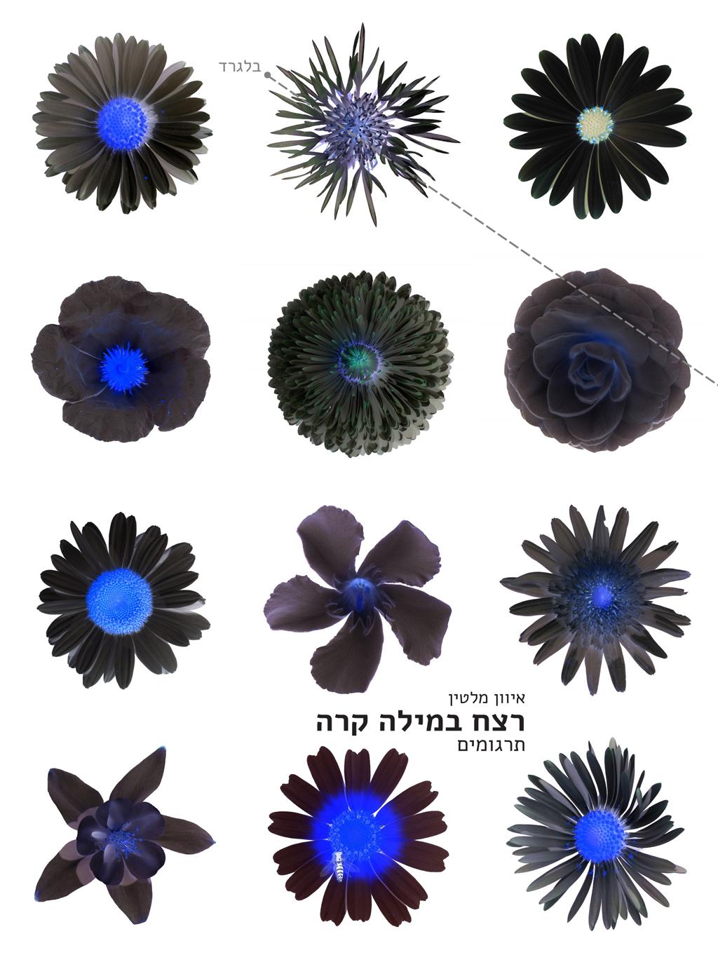 https://altneu.me/work.me/upload/image/retzah-bemila-kara-2020-cover-out.png